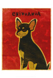 Chihuahua (black and tan) Print by John Golden