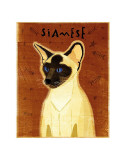 Siamese Prints by John Golden