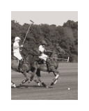 Polo In The Park IV Prints by Ben Wood
