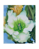 Cup of Silver Ginger, c.1939 Print by Georgia O'Keeffe