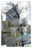 Flatiron Collage Print by Erin Clark