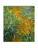The Path in the Iris Garden Poster by Claude Monet