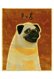 Pug Poster by John Golden