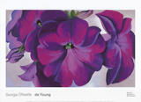 Petunias, c.1925 Affiches van Georgia O'Keeffe