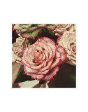 Vintage Rose Pôsters por Elizabeth Hellman