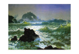 Seal Rock Posters by Albert Bierstadt