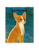 Chihuahua (red) Posters by John Golden