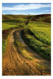 Tuscany 34 Posters by Maciej Duczynski