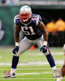 Jerod Mayo 2010 Action Photo