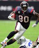 Andre Johnson 2010 Action Photo