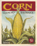 Fresh Corn Poster by K. Tobin