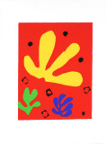 Vegetal Elements Serigraph by Henri Matisse