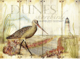 Dunes Shorebird Posters by Mary Escobedo