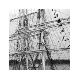 Graceful Sailing Yatch III Prints by Carl Ellie