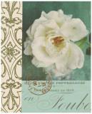 Floral Souvenir I Prints by Cristin Atria