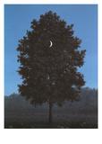 Le seize septembre Plakater af Rene Magritte