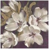 Plum Blossoms I Print by Jurgen Gottschlag