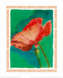 Message in a Bottle, Papaver Posters by A. Vargas