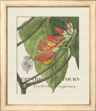 Botanique Tropicale I Print