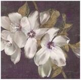 Plum Blossoms II Posters by Jurgen Gottschlag
