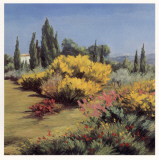 Provencal Landscape Prints by  Zarou