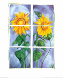 Sunflowers Prints by P. Sonja