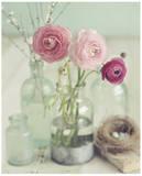 Blooming Bottles Posters af Mandy Lynne