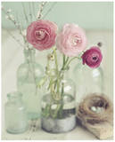 Blooming Bottles Poster von Mandy Lynne