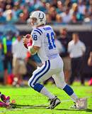 Peyton Manning 2010 Action Photo