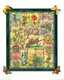 Le Jardin aux Papillons I Prints by C. Meredith