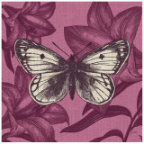 Butterfly Glory Prints by Bella Dos Santos