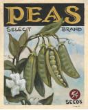 Fresh Peas Posters by K. Tobin