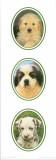 Decorative Panels Dogs I Plakat