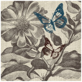 Butterfly Gardens Posters by Bella Dos Santos