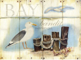 Bay Gull Posters by Mary Escobedo