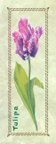 Tulipa Woodwork Prints by L. Tyndall