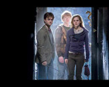 Harry Potter and The Deathly Hallows Part 1 - Harry, Ron and Hermoine Photo Fotografía