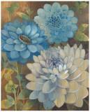 Pretty Blue Dahlias I Posters by Vera Hills