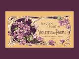 Violettes de Parme Giclee Print
