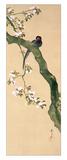 Marzo Lámina giclée por Sakai Hoitsu