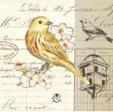 Bird Sketch II Posters by Chad Barrett