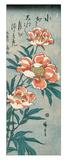 Peonías Lámina giclée por Ando Hiroshige