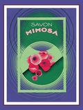 Savon Mimosa Giclee Print