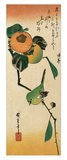 A Japanese White-Eye on a Persimmon Branch Reproduction procédé giclée par Ando Hiroshige
