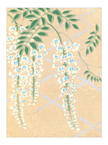 Wisteria Kimono Design Giclee Print