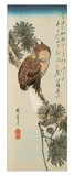 A Little Brown Owl on a Pine Branch with a Crescent Moon Behind Gicléedruk van Ando Hiroshige