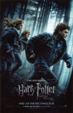Harry Potter and The Deathly Hallows Part 1 Póster