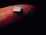 Extreme Close-Up of a Microchip on a Fingertip Photographic Print by Bruce Dale