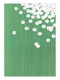 Wild Daisies Giclee Print by Takashi Sakai