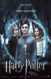 Harry Potter and The Deathly Hallows Part 1 Lámina maestra